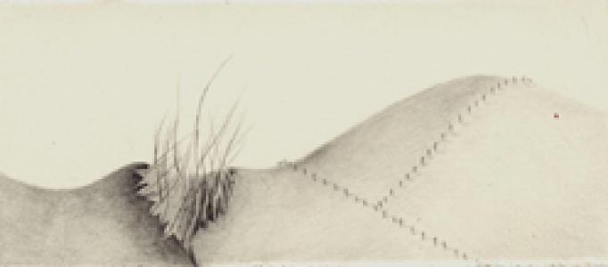 Grassy Hole
